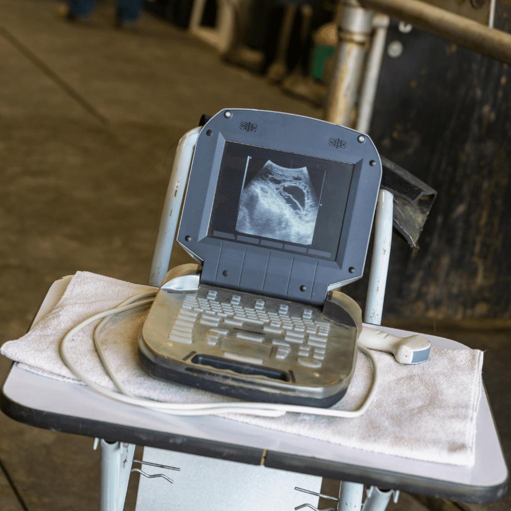 Mobile Ultrasounds
