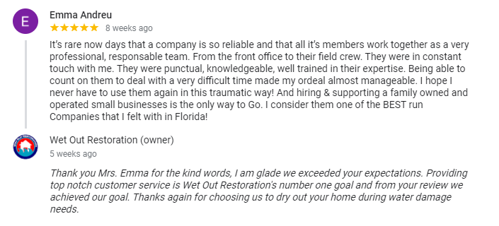 Customer Review of Wet Out Restoration