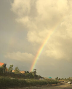 My Practice Experts Launched and this rainbow is how it started