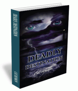 3D Book Cover Option