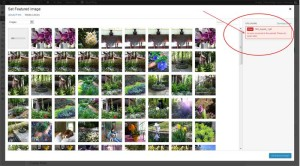 Image Upload Error for a Post in WordPress