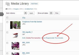 Image Upload fix thumbnail for Post in WordPress