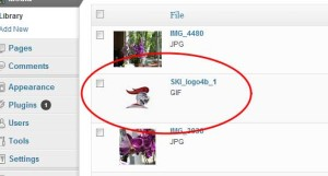 Image Uploaded Just fine for Post in WordPress