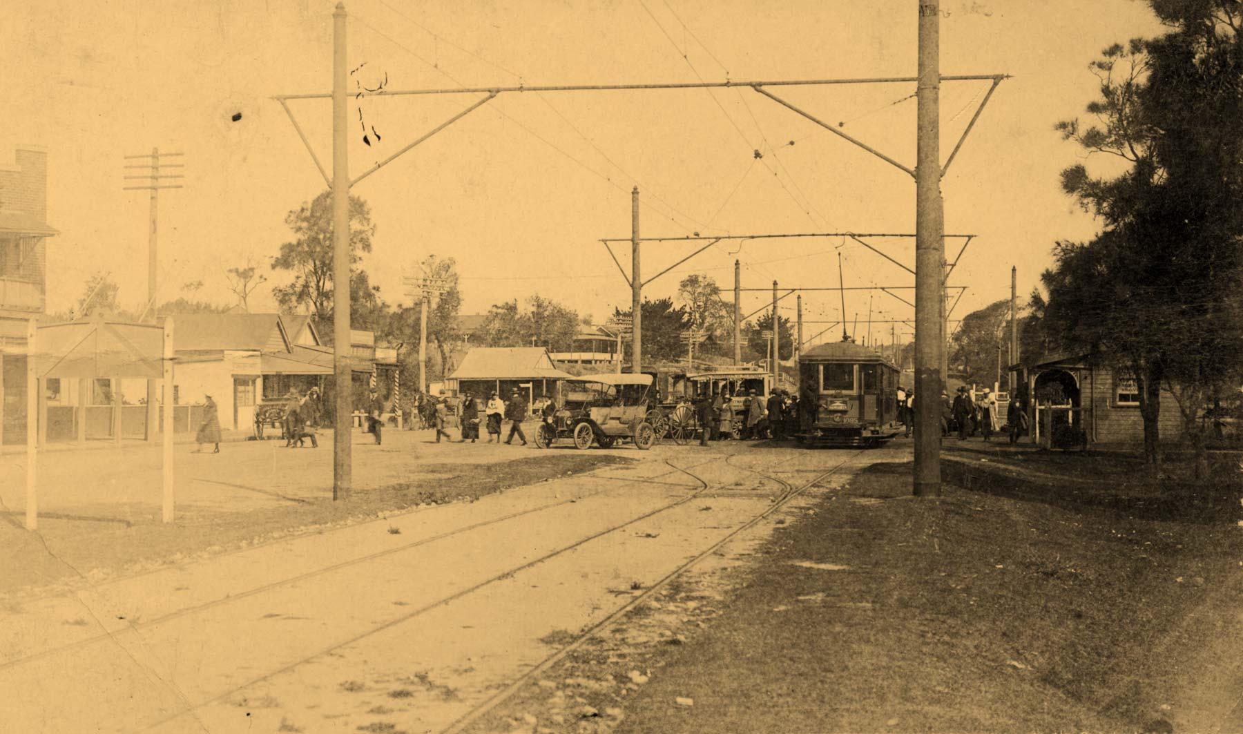 Tram to Narrabeen