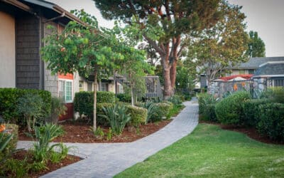 Here's How We Are Living Green at Sundial Apartment Homes
