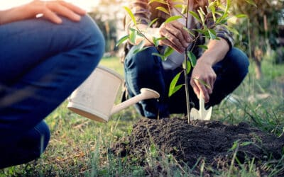 AMC Holds Memorial Tree Planting to Honor the Lives of Three Outstanding Employees