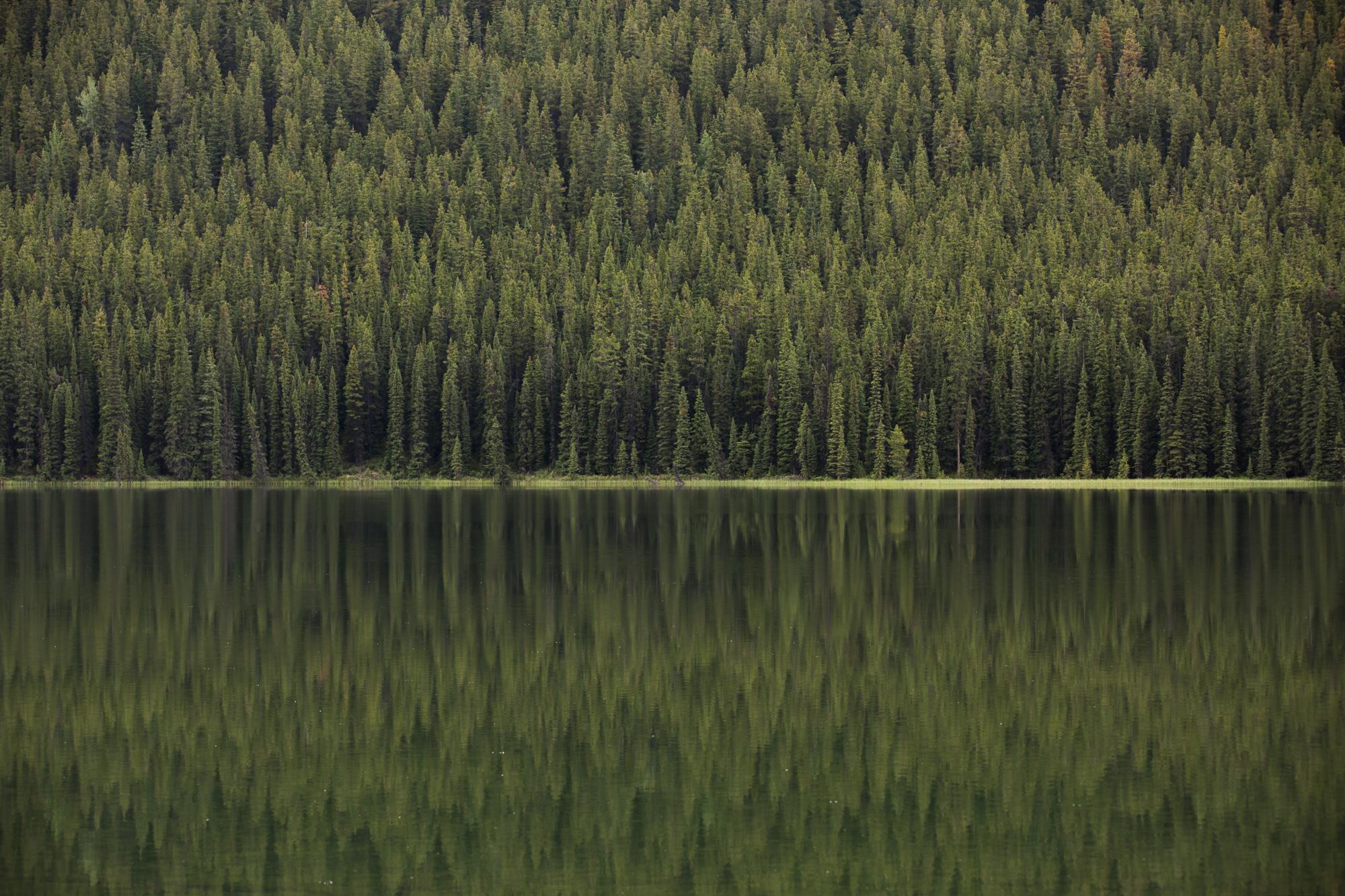 16-Bec_Kilpatrick_Photography_CanadaBEC_222922