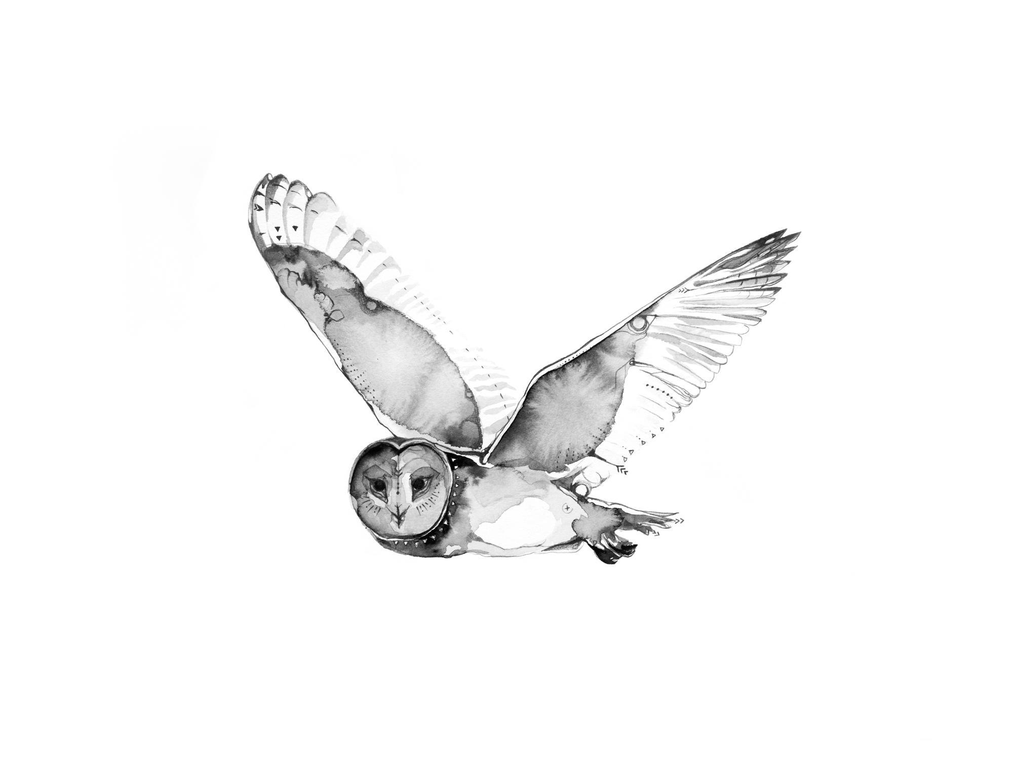 1-Bec_Kilpatrick_Illustration_Antlers_Wingsowl