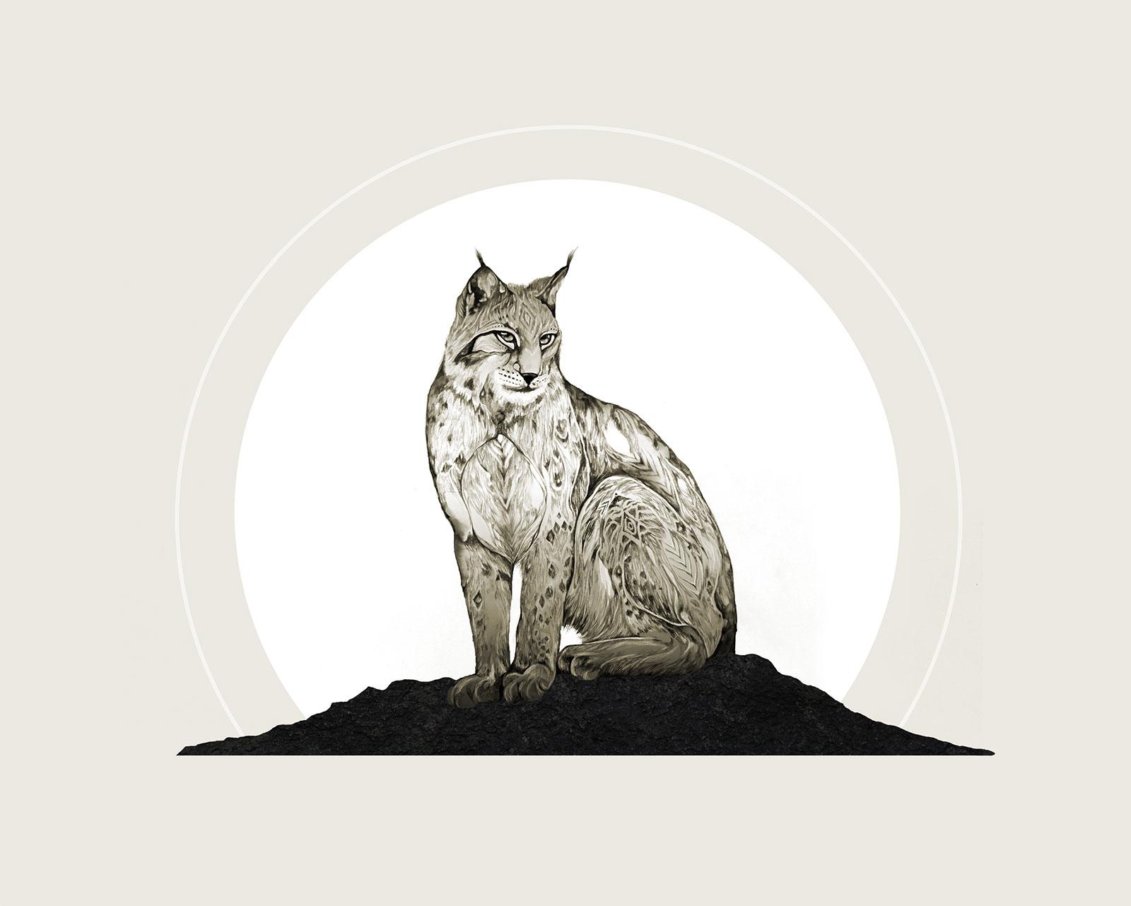bobcatprintlandscape8x10
