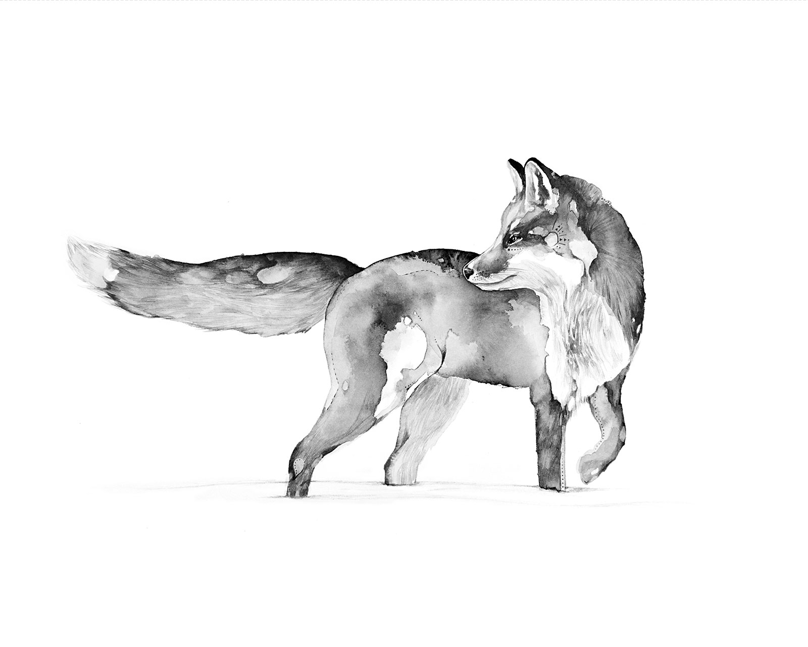foxprintlandscape8x10