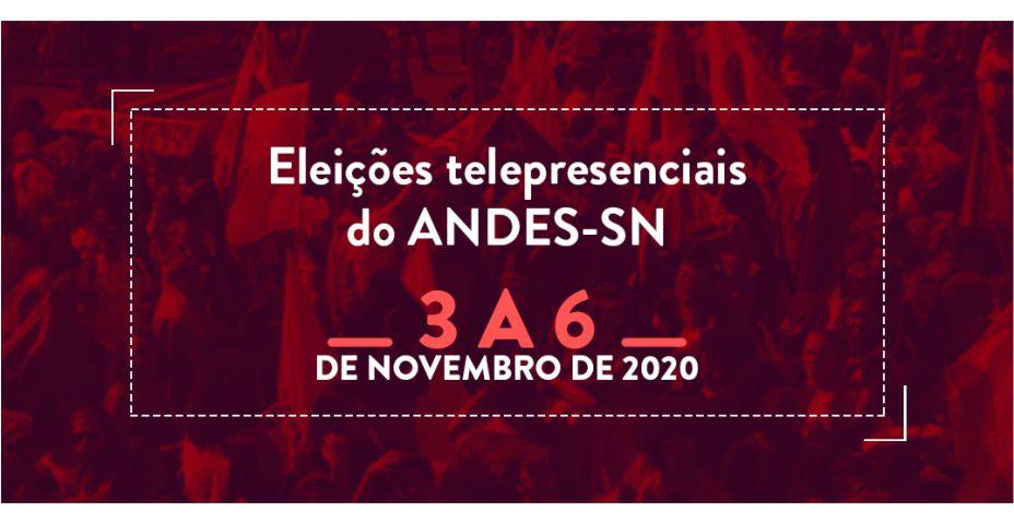9º Conad extraordinário define eleições do ANDES-SN telepresenciais em novembro