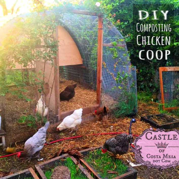 180406 DIY Composting Chicken coop with chicken salad bar square
