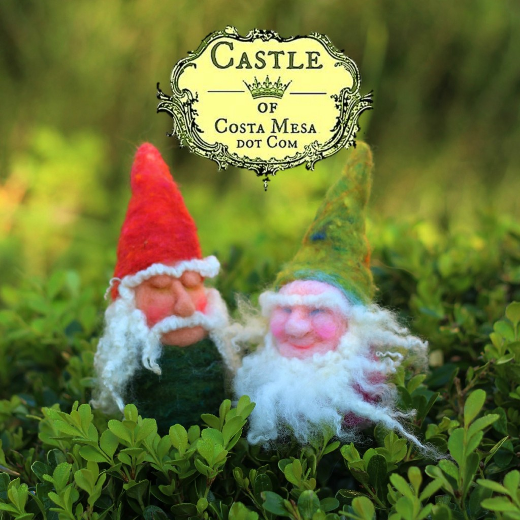 141209 gnome buddies Wigfrith and Æthelweard strolling on boxwood on a sunny morning