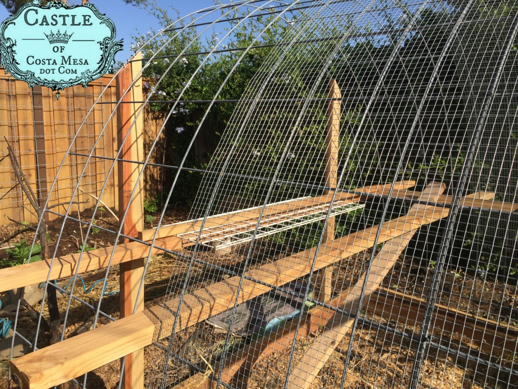 179428 building chicken nest box and roost bars in the hen house 8917