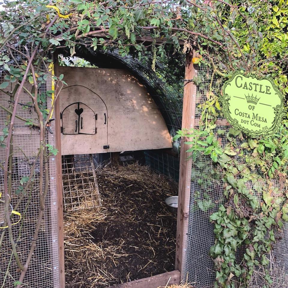 190129 Composting Coop L