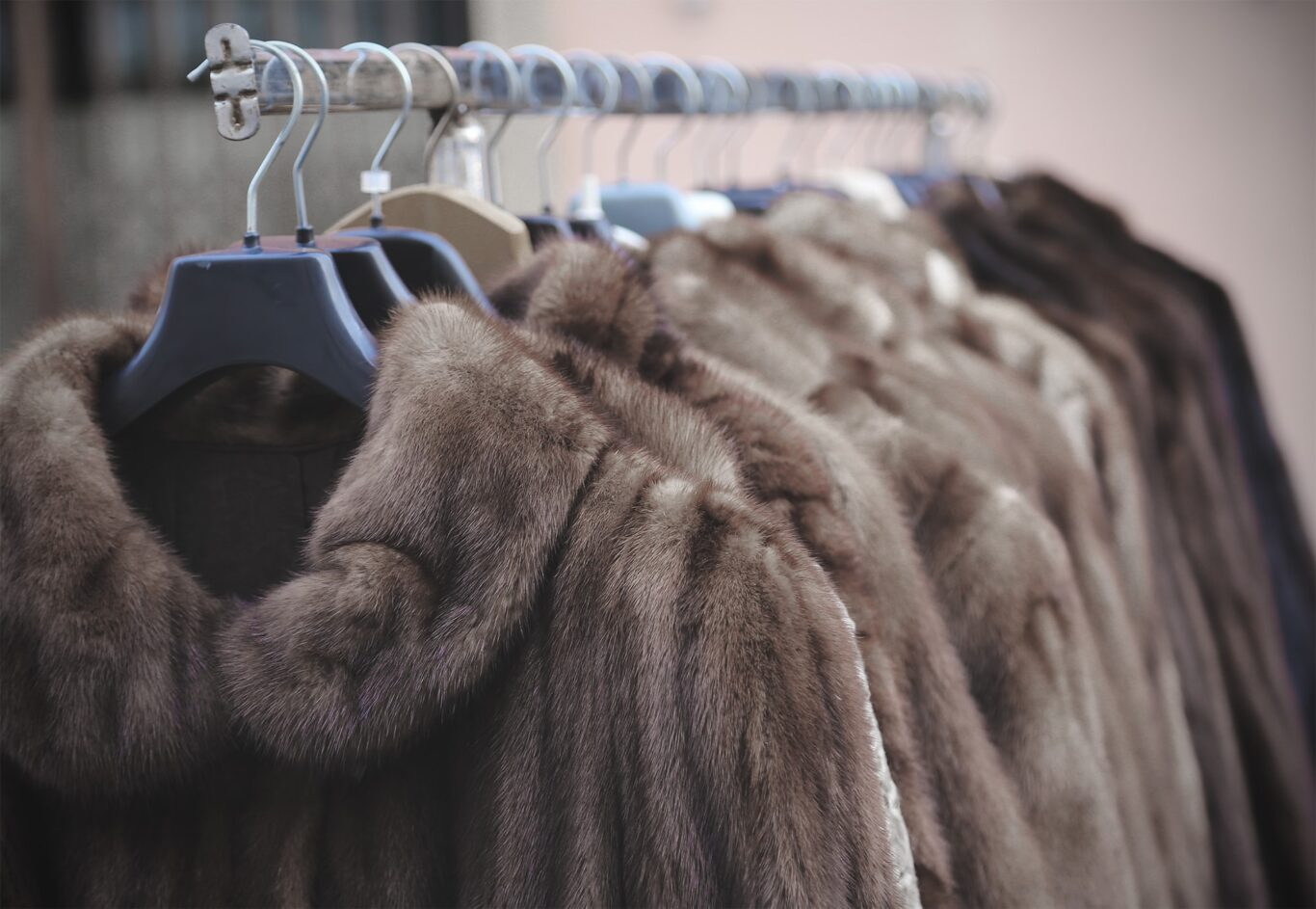 Fur Banned in New York & California- Other States to follow!