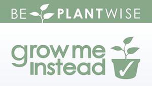 Grow me Instead