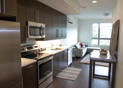 Riverhouse project - Trent Kitchen