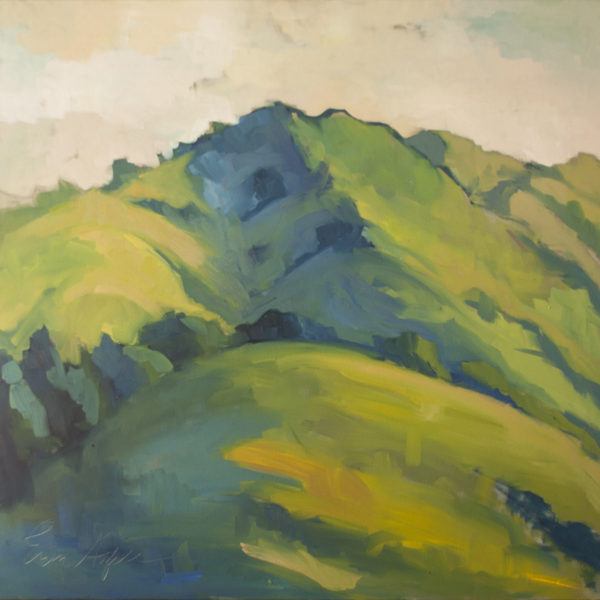 Spring Mountains, Big Sur by Erin Lee Gafill