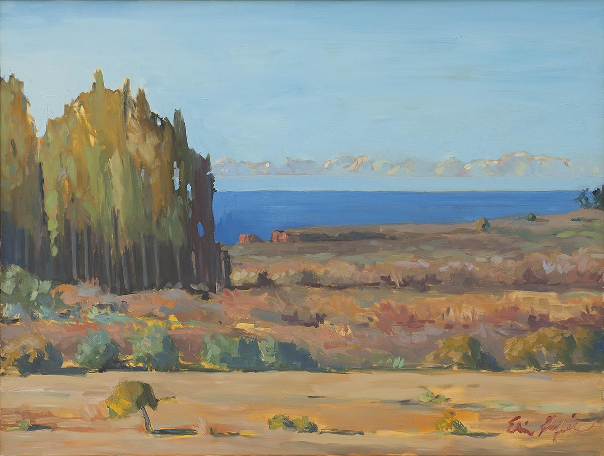 Eucalyptus, Fog, Andrew Molera, Big Sur by Erin Lee Gafill