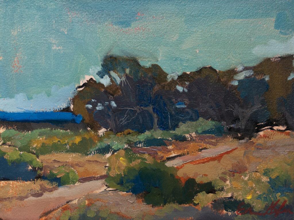 Eucalyptus at Andrew Molera