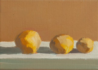 Three Lemons, Shadows by Erin Lee Gafill
