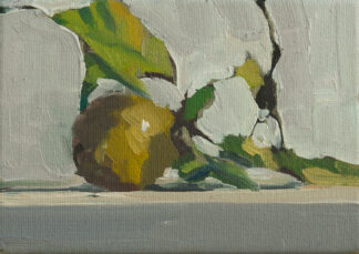 Lemon on the Vine by Erin Lee Gafill