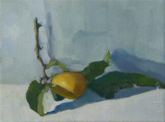 Lemon, Morning Light III by Erin Lee Gafill