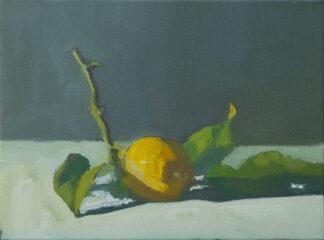 Lemon, Morning Light II by Erin Lee Gafill
