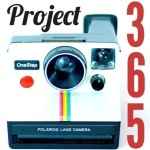 Project 365: A photo a day for a year