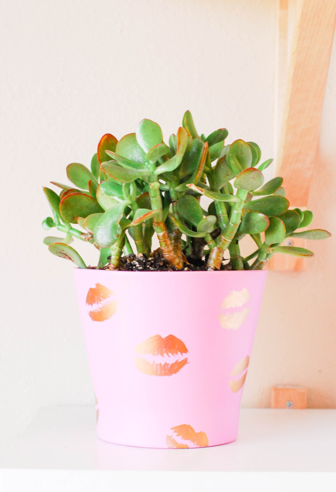 DIY Pucker Planter