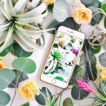 #ProperPrintables \\ Botanical Wallpaper Download