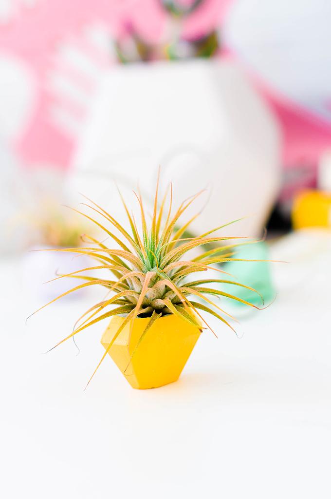DIY Concrete Gems Mini Planters | www.theproperblog.com