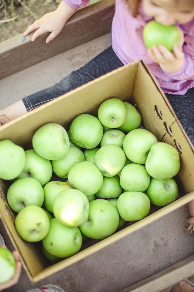crate of granny smith apples