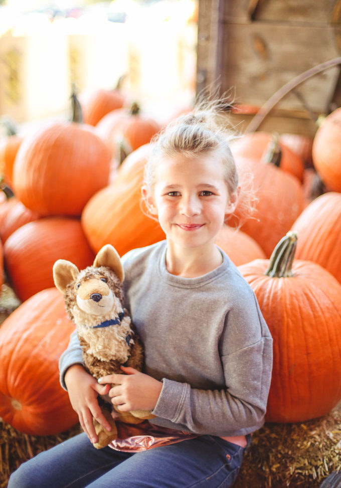 little girl sitting on pumpkins