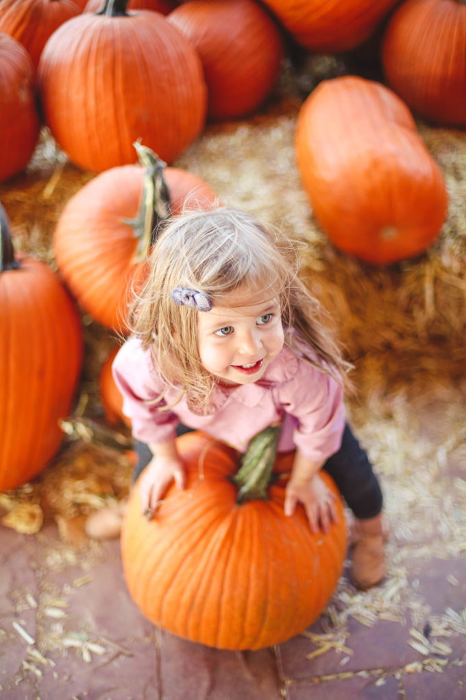 toddler girl sitting on pumpkin