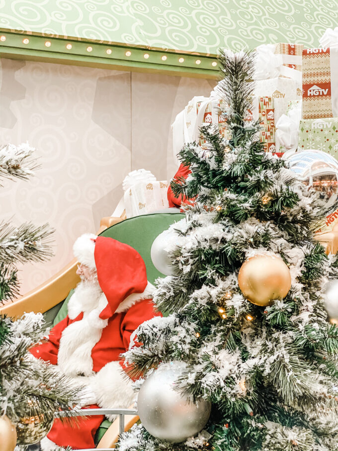 Santa behind Christmas Trees