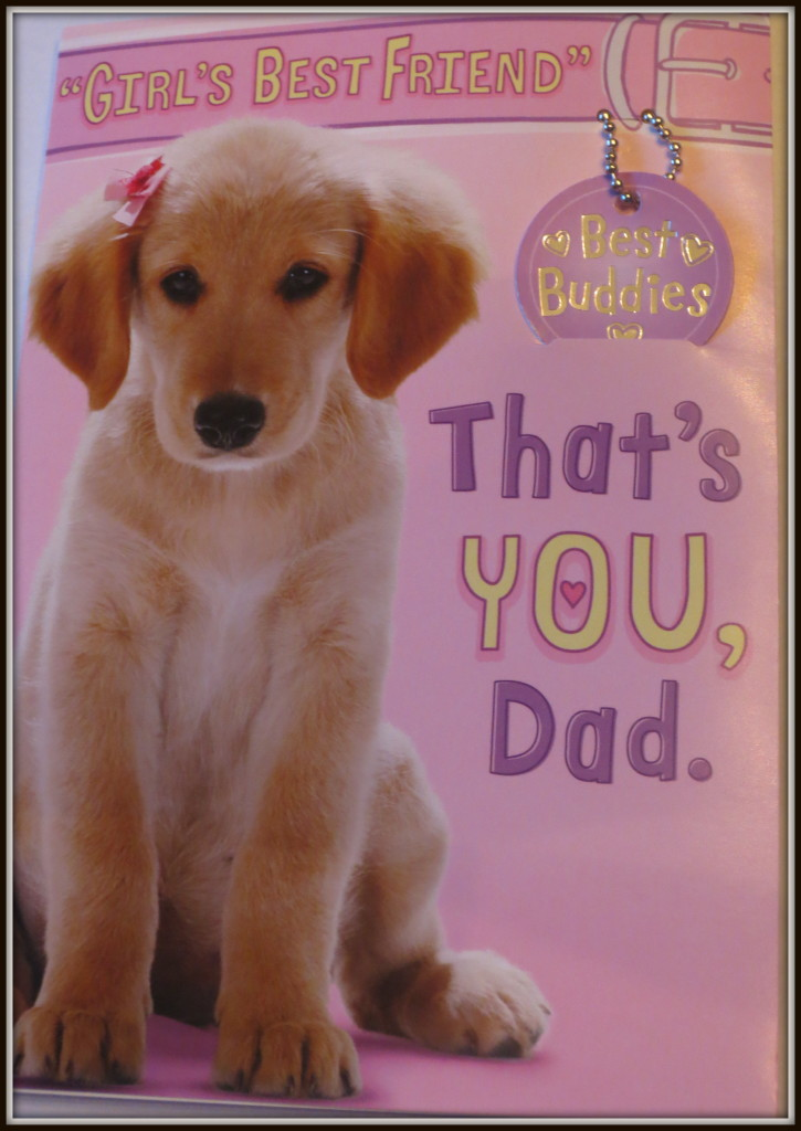 MIMM 12 - fathers day 2013 card