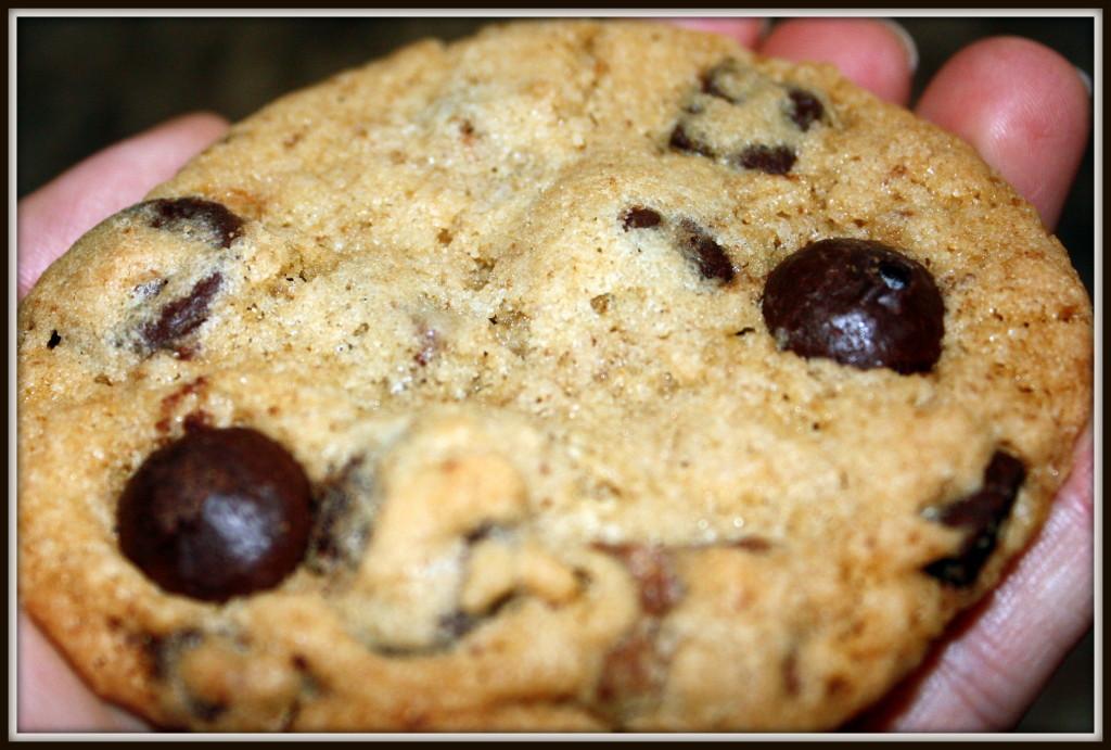 WIAW 31 - Nana's Cookie