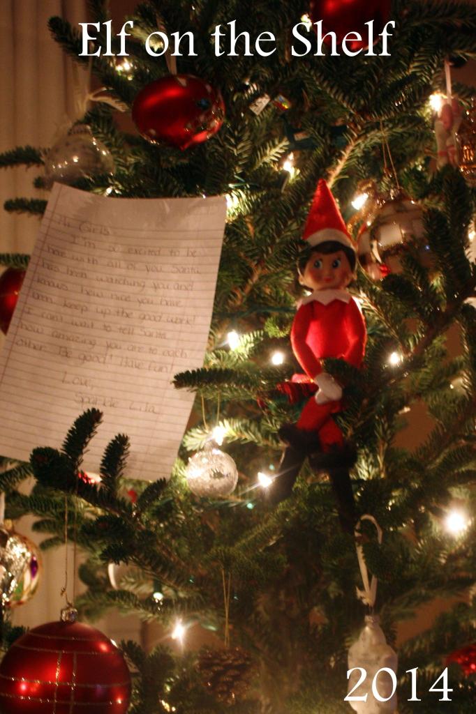 christmas 2014 - elf on shelf