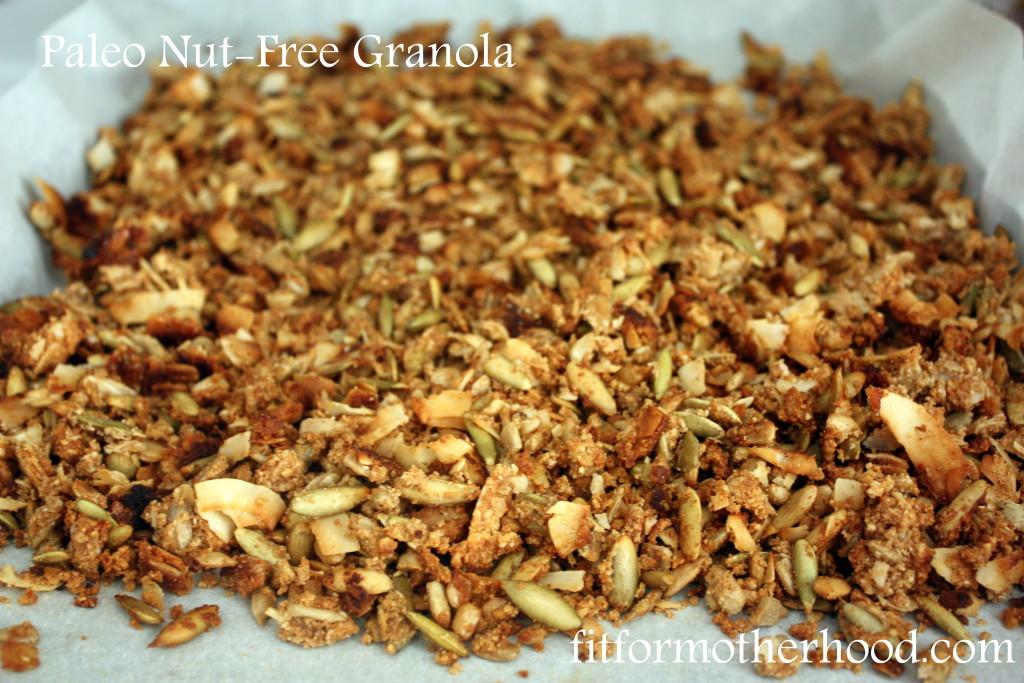 paleo nut fre granol
