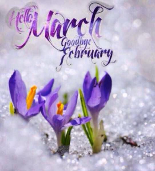 February Happenings 2017