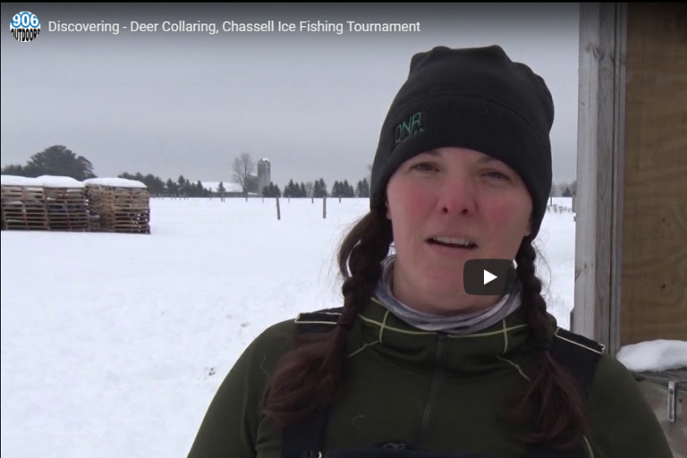 Deer Collaring, Chassell Ice Fishing Tournament