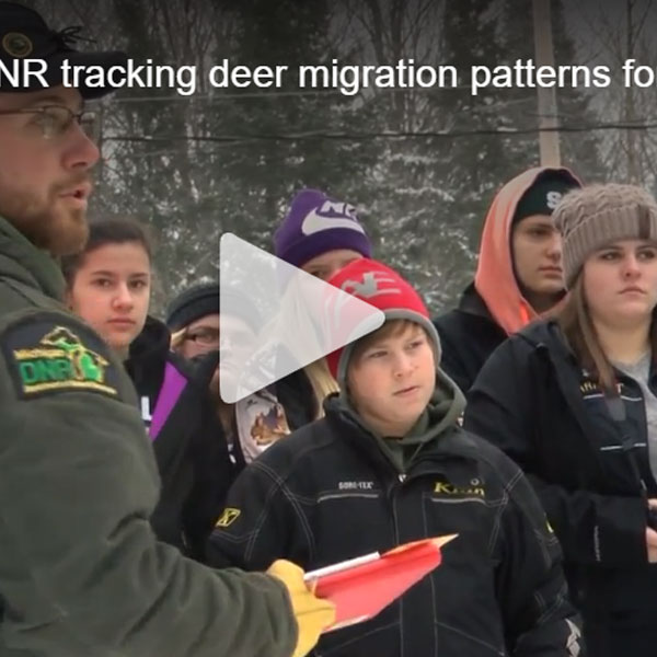 Michigan DNR tracking deer migration patterns for CWD study