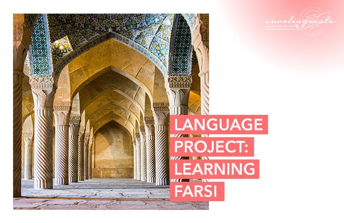 Learn Farsi: My new language project to learn Farsi with Drops and Preply