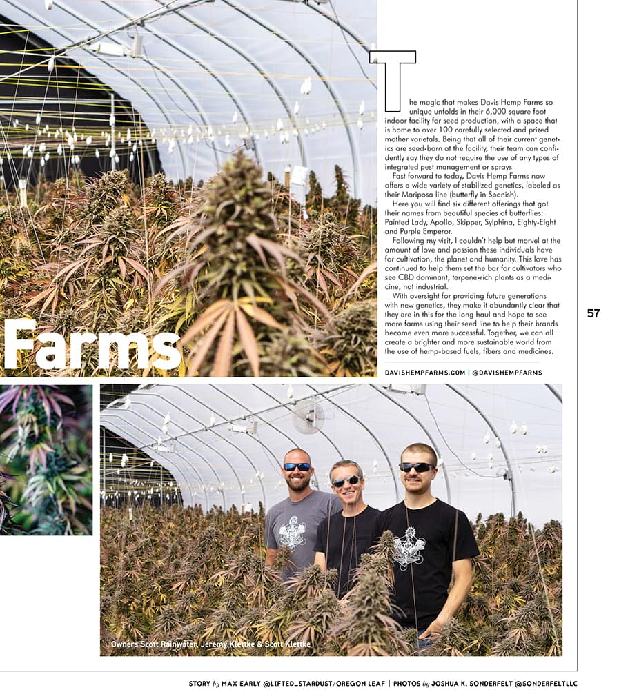 Oregon Leaf October 2020 page 57 featuring a greenhouse of Purple Emperor Hemp