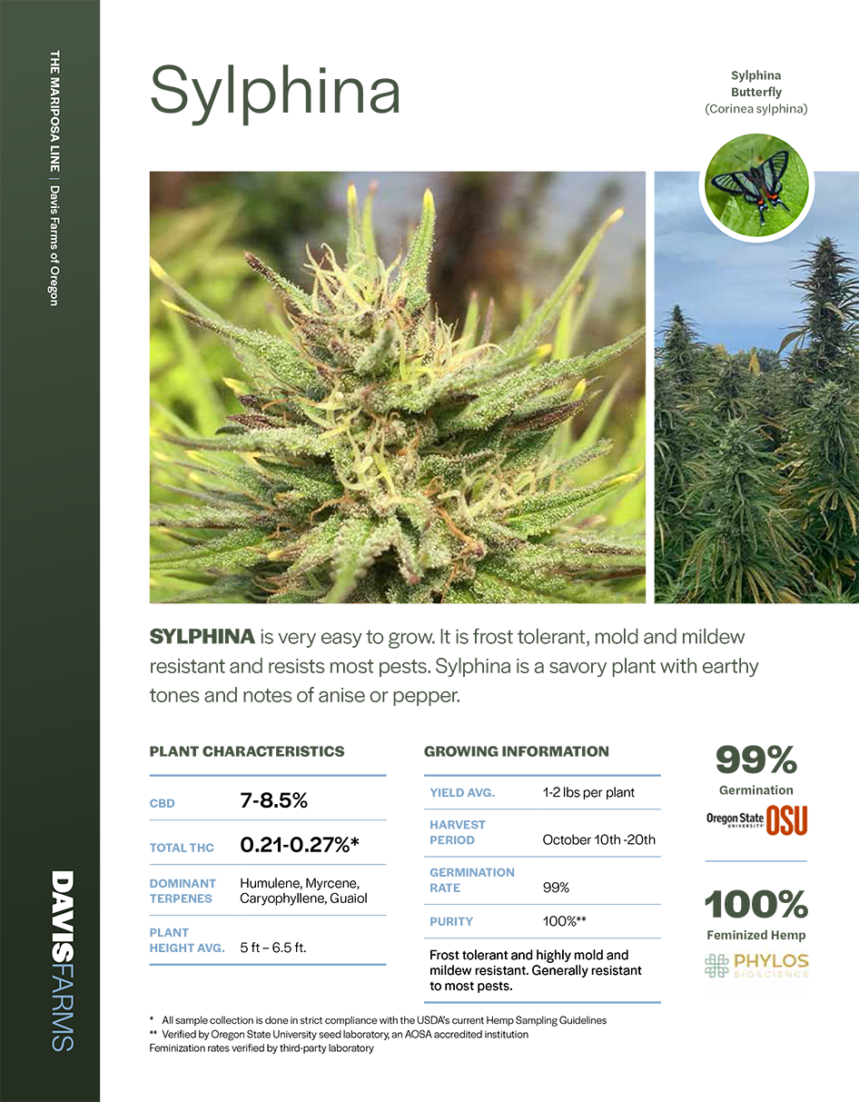 Sylphina hemp lab results Cover