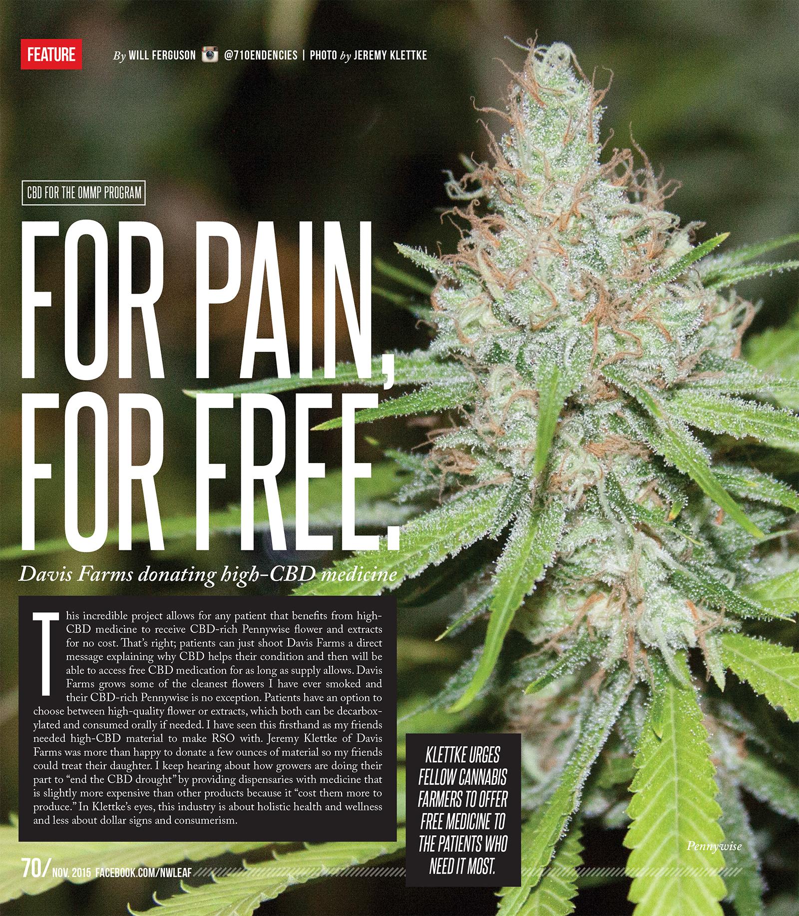 Oregon leaf november 2015 for pain for free