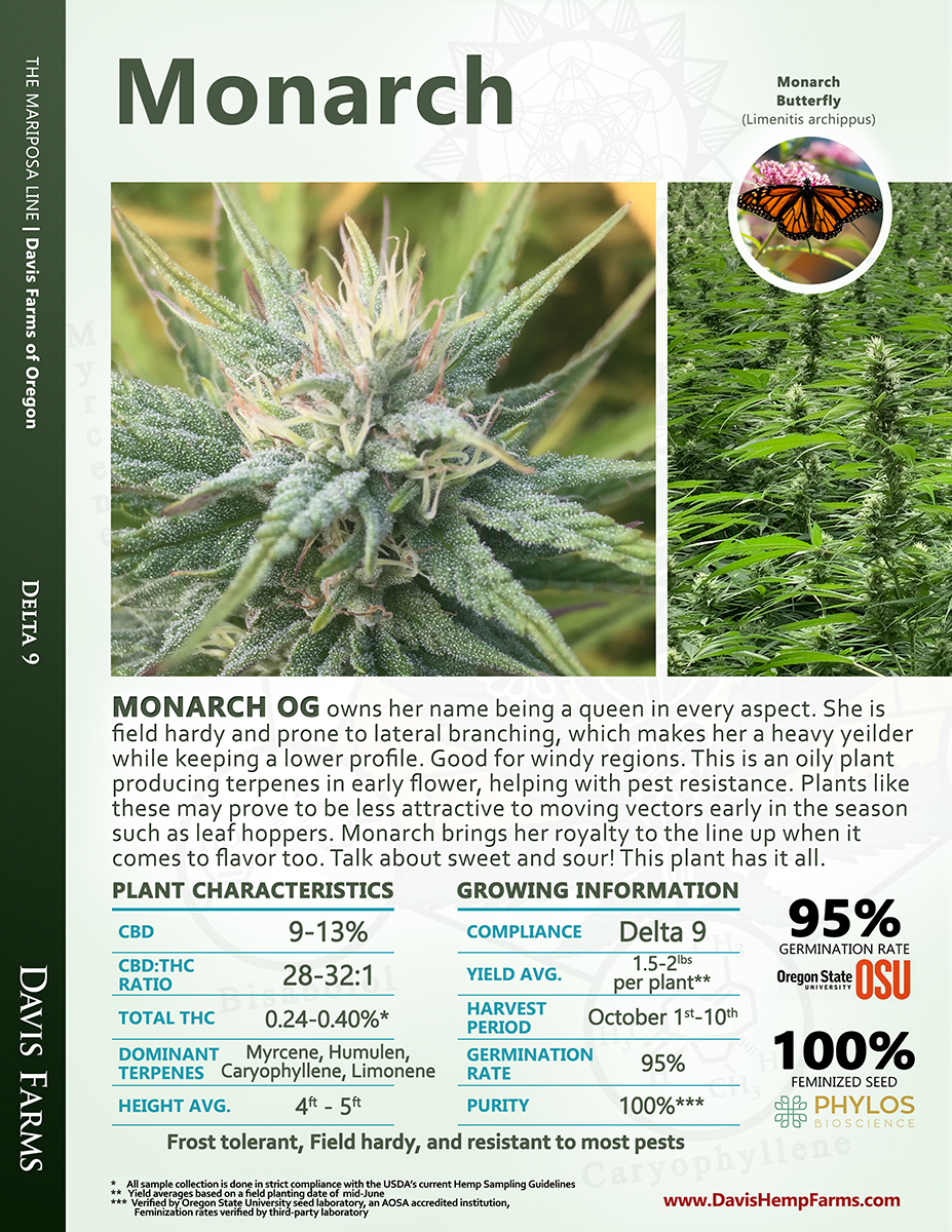 Available data for hemp variety Monarch