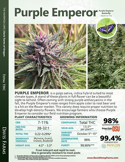 Available data for hemp variety Purple Emperor
